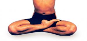 siddhasana  vydya health  find providers products